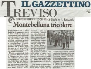 Il Gazzettino - Assisi 2015